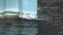 [날씨] 세밑 한파로 한강 곳곳 얼음...서해안·제...