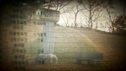 야산에 묻힌 유관순 가족들...잊혀진 항일의 흔적