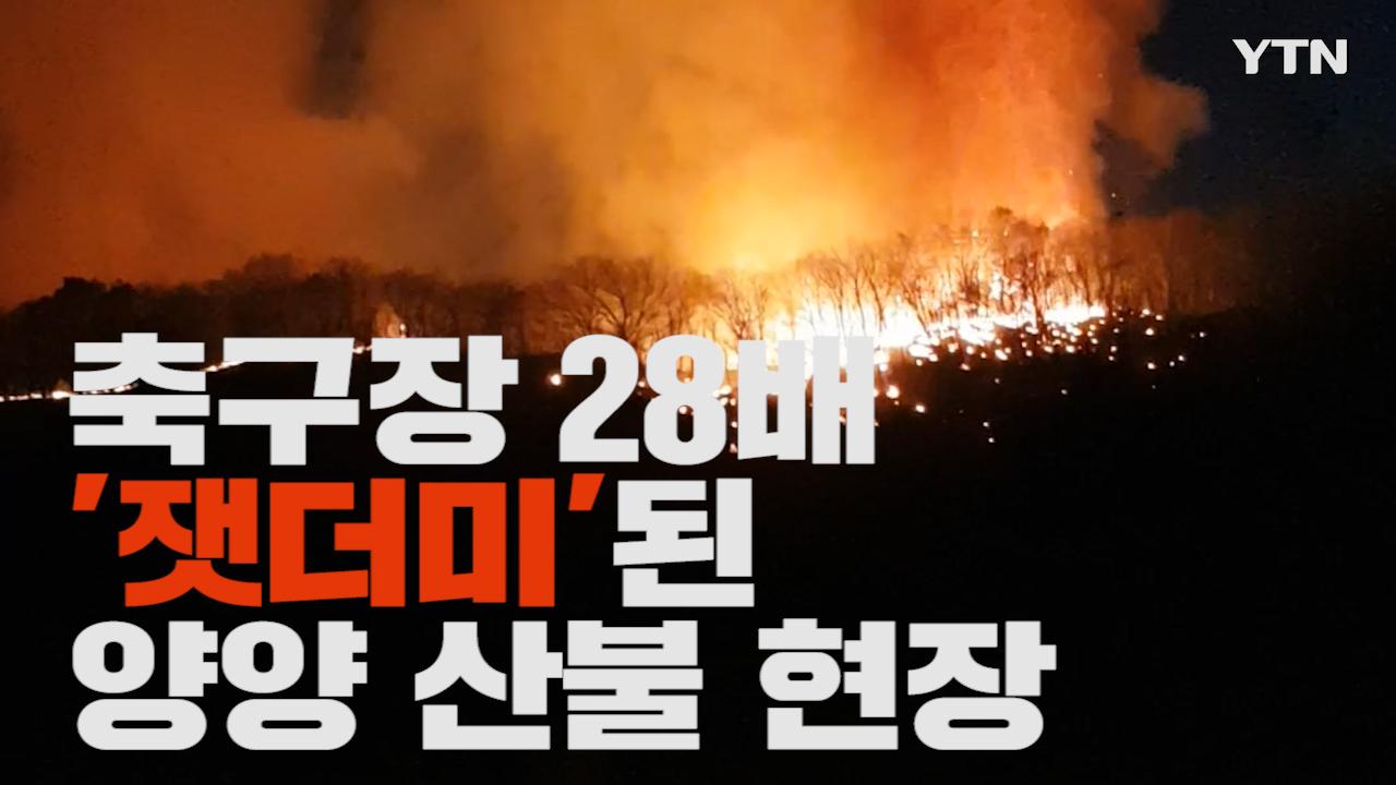 [제보영상] 양양산불 20여시간 만에 진화…발화지점은 '떡판매장 앞' 추정