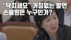 """[자막뉴스] """"닥치세요"""" 거침없는 발언...손혜원은 누구인가?"""