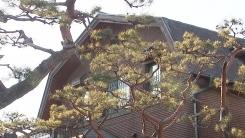 [취재N팩트] 표준주택 공시가격 역대 최대 인상...시장 영향은?