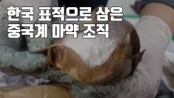 [자막뉴스] 한국 표적으로 삼은 중국계 마약 조직...적발 6배 급증