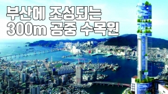 [자막뉴스] 2022년 부산에 조성되는 '300m 공중 수목원'