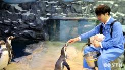 [해보니 시리즈 67] 상어 먹이 주고, 펭귄 집 청소... 아쿠아리스트 돼보니