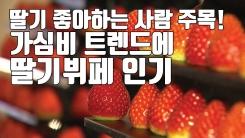 [자막뉴스] 딸기덕후 주목!...가심비 트렌드에 딸기뷔페 인기