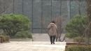 [날씨] 서울 등 중부 대설주의보...최고 10cm