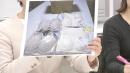 아베 비판 日여성들에 '비열한' 속옷 배달 잇따라