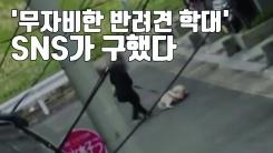[자막뉴스] '무자비한 반려견 학대'...갑자기 돌변한 주인