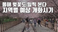 [자막뉴스] 올해 벚꽃 예년보다 일찍 본다...서울 4월 3일 개화