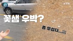 [제보영상] 마른 하늘에 우박?!