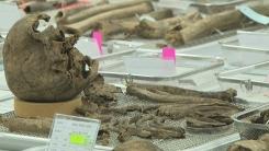 발굴 유해 1.3%만 신원 확인...DNA 분석 한계