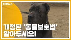 [자막뉴스] 개정된 '동물보호법' 알아두세요!