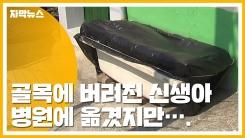 [자막뉴스] 인천 한 주택 골목에 버려진 신생아...결국 숨져
