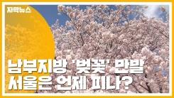 [자막뉴스] 남부지방 '벚꽃' 만발...서울은 언제 피나?
