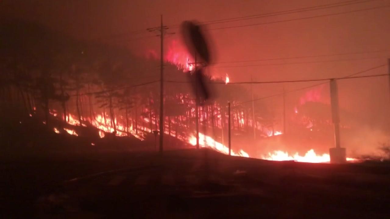 고성 산불로 1명 사망·250ha 잿더미