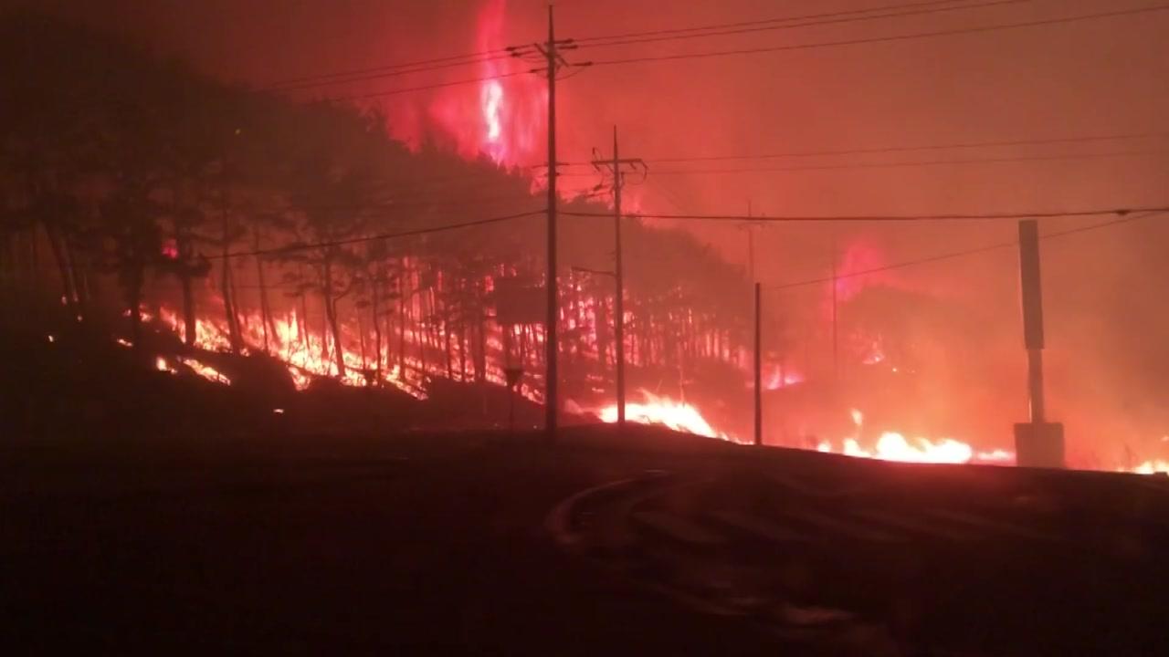 정부, 동해안 산불지역에 '재난사태' 선포