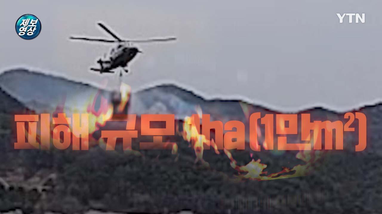 [제보영상] 경북 예천 담뱃불에 시작된 산불, 헬기 6대 출동