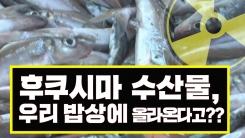 [3분뉴스] '후쿠시마 수산물' 다시 우리 밥상에 올라온다고?