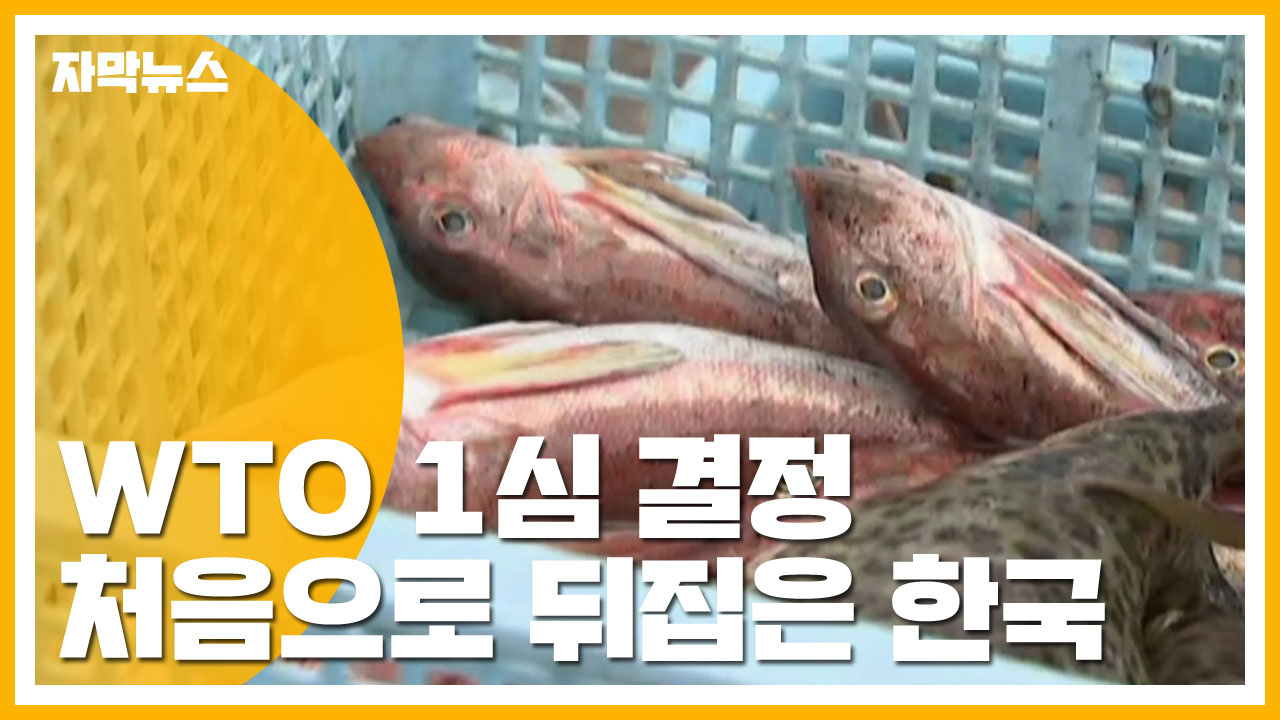 [자막뉴스] WTO 1심 결정 처음으로 뒤집은 한국