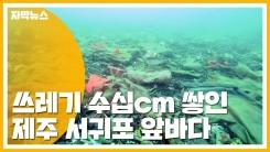 [자막뉴스] 생활 쓰레기 수십cm 뒤덮인 서귀포 앞바다