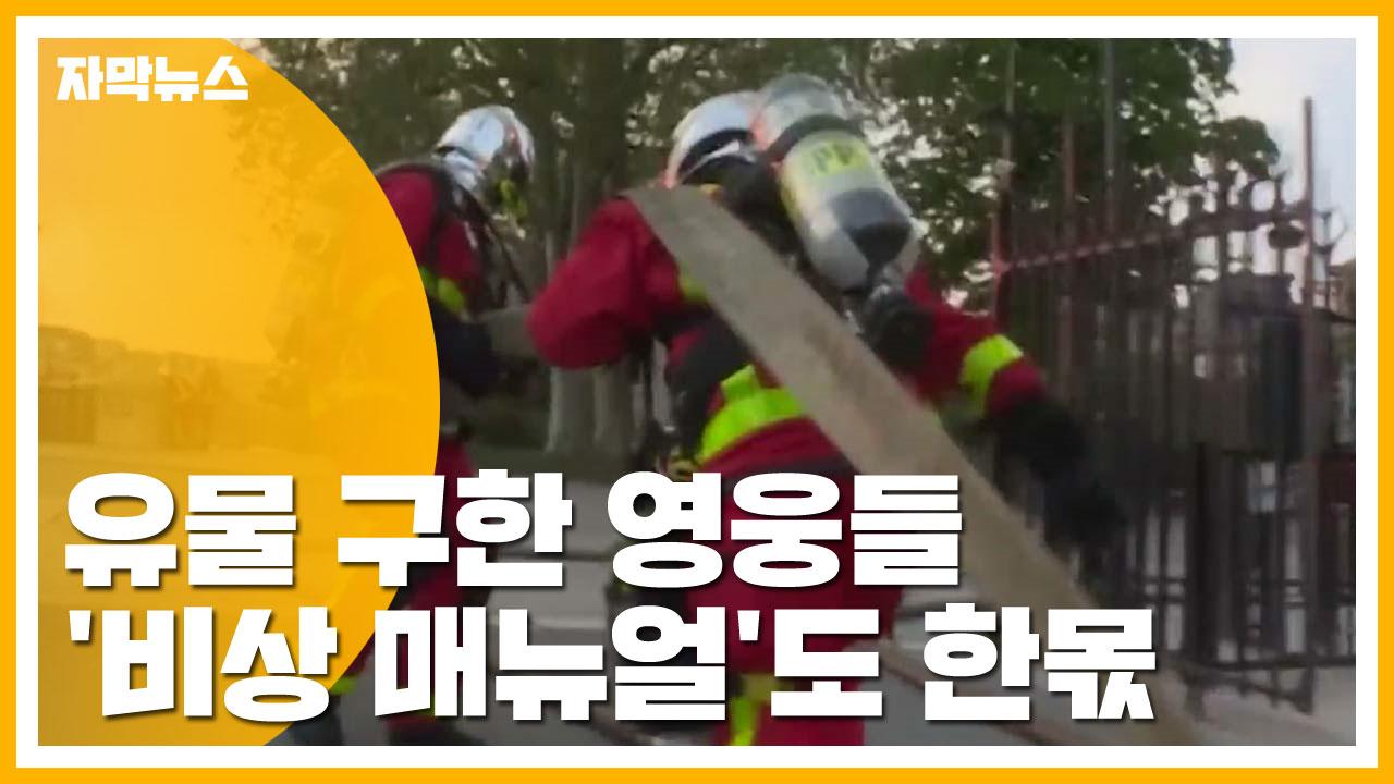 [자막뉴스] 유물 구한 영웅들...'비상 매뉴얼'도 한몫
