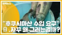 """[자막뉴스] """"후쿠시마산 수입 계속 요구""""...日 어이없는 주장 왜?"""