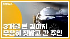 [자막뉴스] '3개월 된 강아지' 자동차로 밟고 지나간 주민