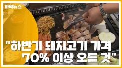 """[자막뉴스] """"하반기 돼지고기 가격 70% 이상 오를 것""""...이유는?"""