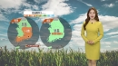 [날씨] 퇴근길 곳곳 미세먼지 ↑...내일 기온 크게...