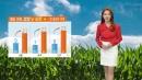 [날씨] 내일 아침 쌀쌀·낮 따뜻...큰 일교차 주의