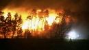 [날씨] 보름 만에 다시 건조경보...산불 등 화재 ...