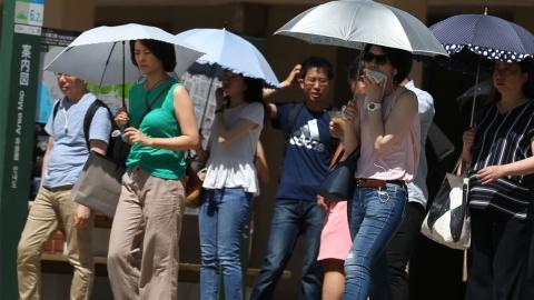 """일본 정부의 호소 """"남자들 여름에 양산 써라""""…왜?"""