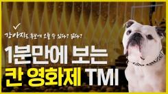 [별책부록] 칸 영화제 TMI 1분 정리!