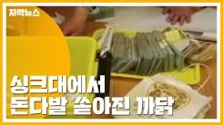 [자막뉴스] 싱크대에서 쏟아진 현금다발...악덕 체납자 무더기 적발