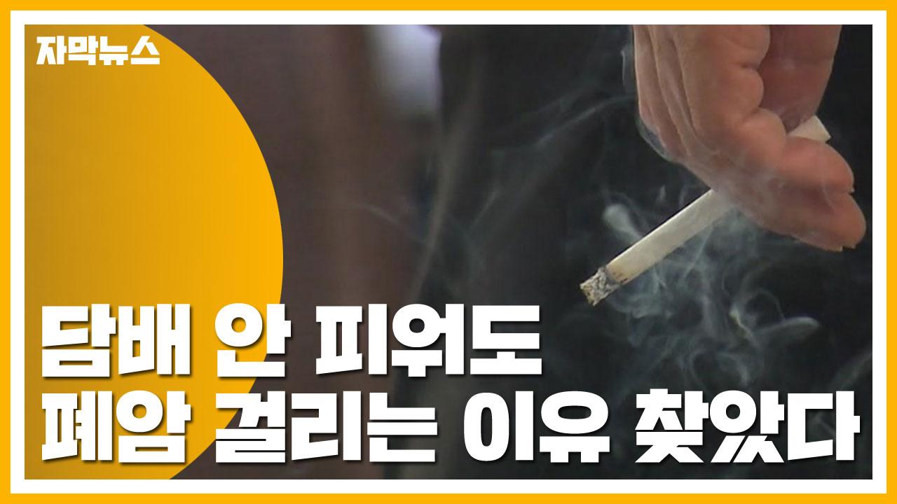 [자막뉴스] 담배 안 피워도 폐암 걸리는 이유 찾았다