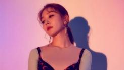 보아, 6월 4일 자작곡 '피드백' 컴백…넉살 피처링