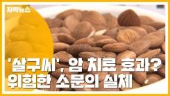 [자막뉴스] '살구씨', 암 치료 효과?...위험한 소문의 실체