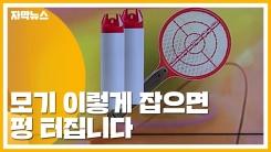 [자막뉴스] 모기 이렇게 잡으면 절대 안 돼요!