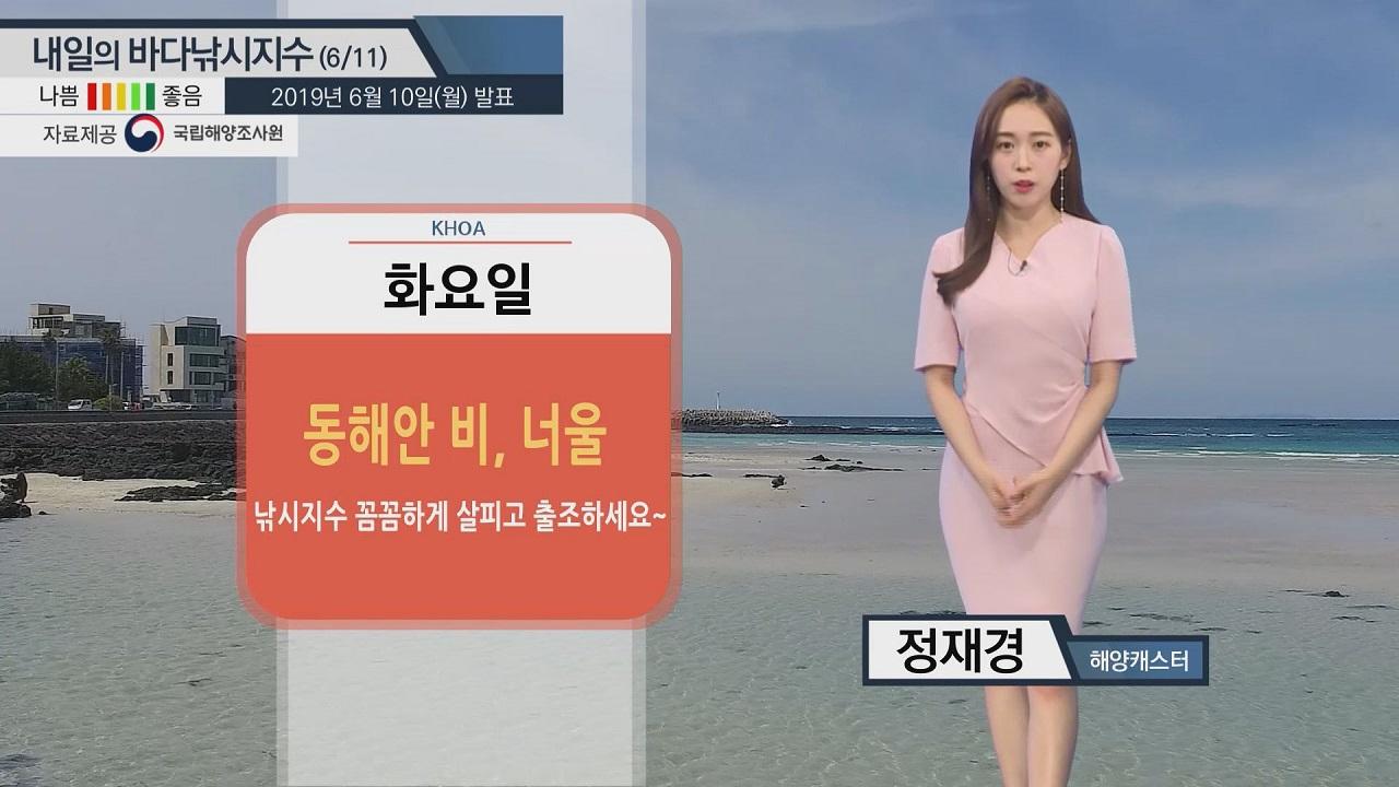 [내일의 바다낚시지수] 6월11일 동해안 해황 궂은 편,제주 강한 바람 그 밖의 해안 무난