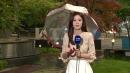 [날씨] 중부 우산 챙기세요...벼락 동반 요란한 비