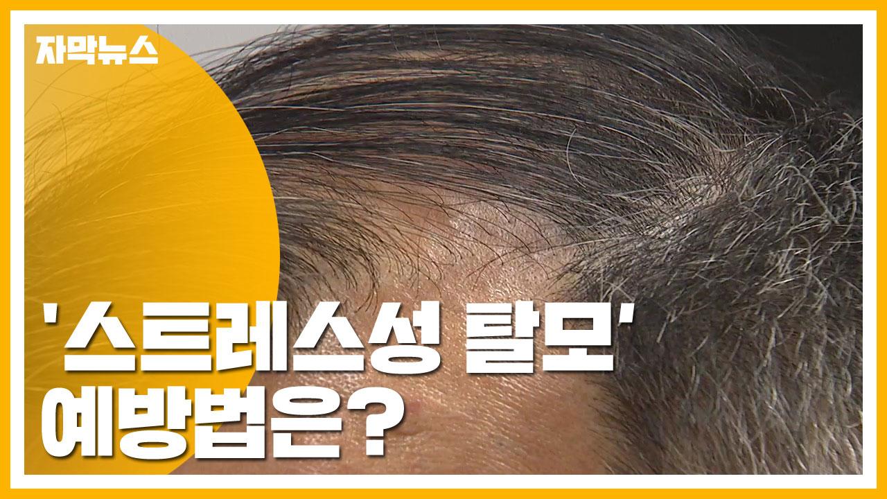 [자막뉴스] 빠지고 가렵고...'스트레스성 탈모' 예방법은?