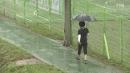 [날씨] 전국 '동시 장마' 시작...제주도·남해안 ...