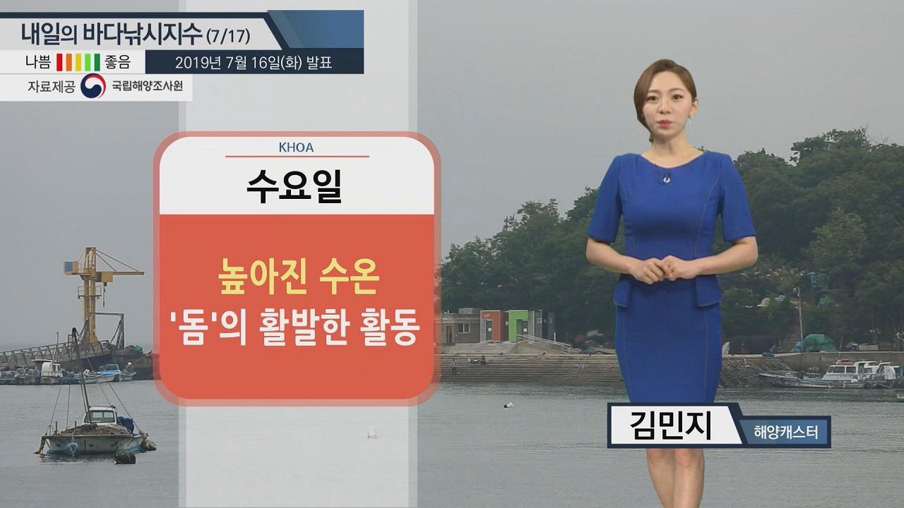 [내일의 바다낚시지수] 7월 17일 대체로 무난한 해황...동해 수온 높고, 성산포 침수위험