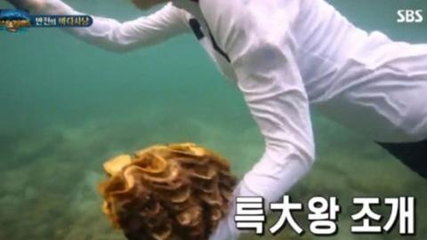 """SBS 측 """"'정글의 법칙' 대왕조개 논란 관련 제작진 징계·다시보기 중단""""(공식)"""
