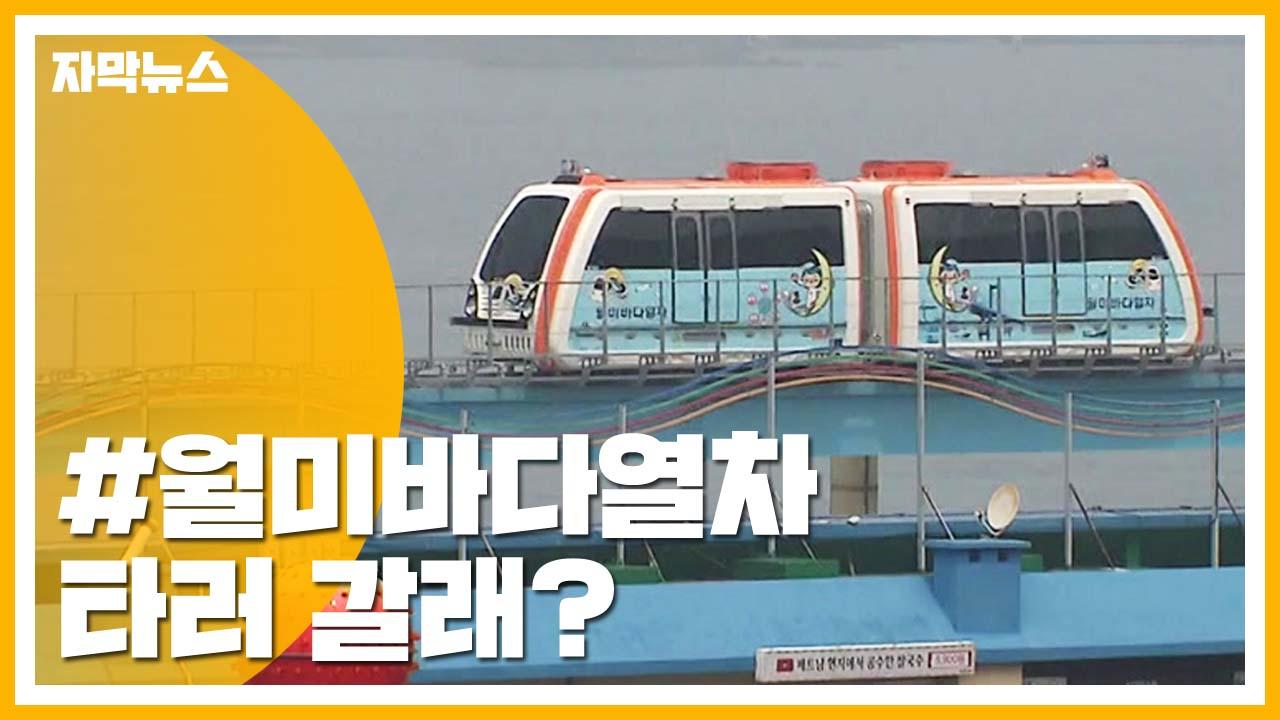 [자막뉴스] 바다 보며 달리는 '월미바다열차' 타러 가자!