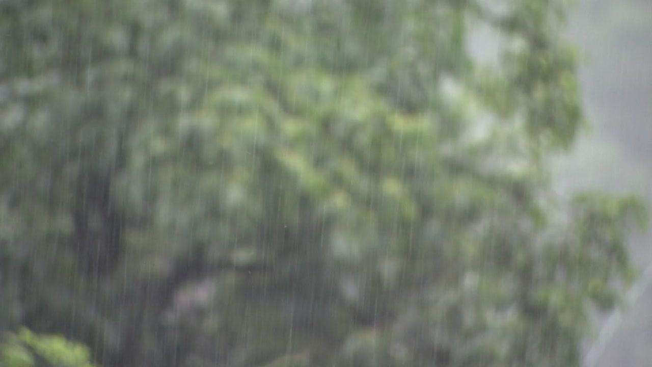 '다나스'가 몰고 온 수증기가 '물 폭탄' 되어 쏟아진다