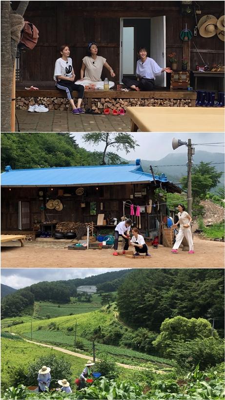 염정아·윤세아·박소담 '삼시세끼-산촌편', 8월9일 첫 방송 확정(공식)