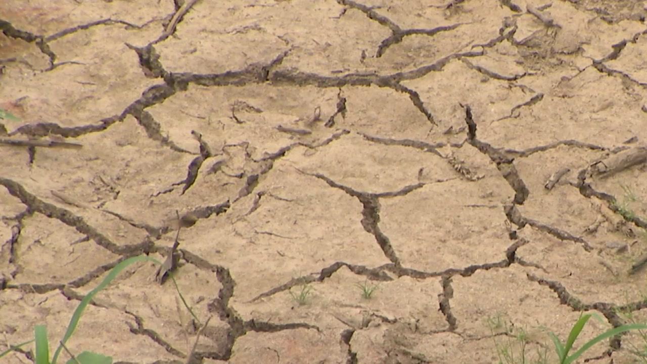 태풍 온다는 데 가뭄 해갈 도움될까?...기대반 우려반