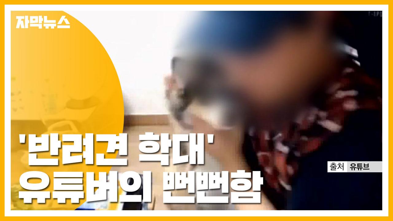 """[자막뉴스] """"내 개 때린 게 죄?""""...아슬아슬 막가는 유튜버"""