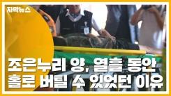 [자막뉴스] 조은누리 양, 열흘 동안 홀로 버틸 수 있었던 이유